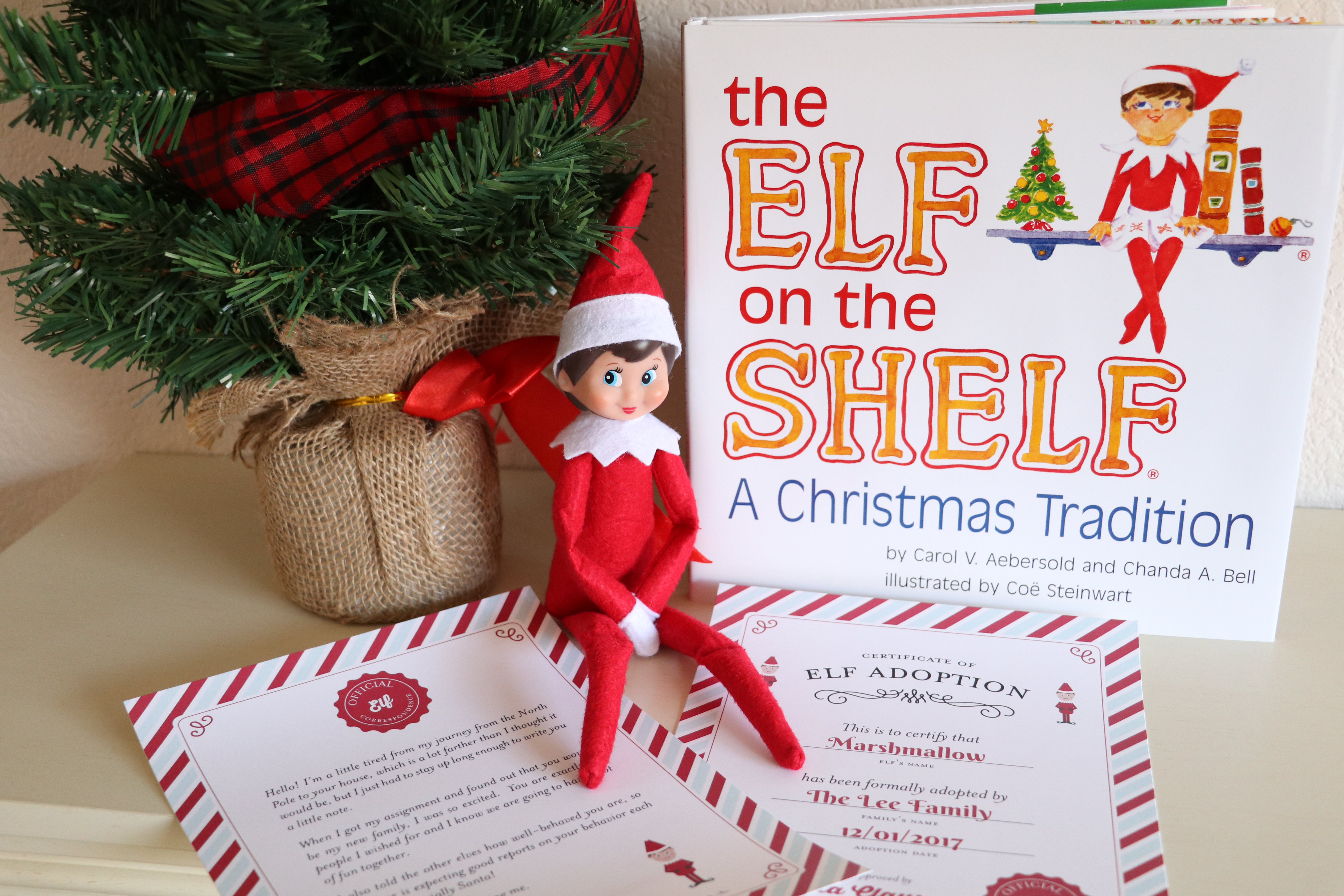 Elf on the shelf adoption and arrival the denver housewife for Elf on the shelf adoption