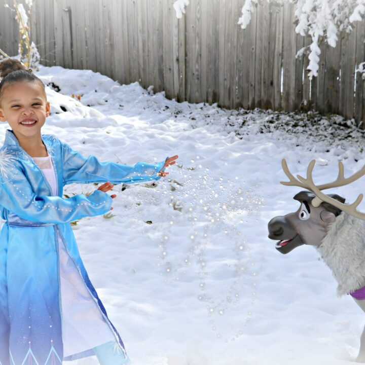 5 Frozen 2 Toys Perfect for Any Disney's Frozen Lover