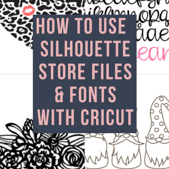How to Use Silhouette Cameo Design Store SVG's with Your Cricut Explore Air 2