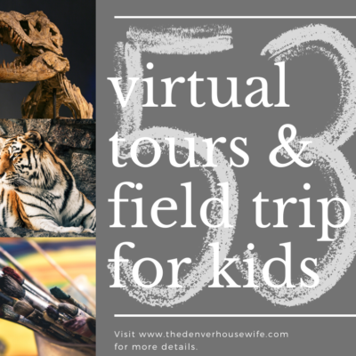 Field Trips and Virtual Tours For Kids