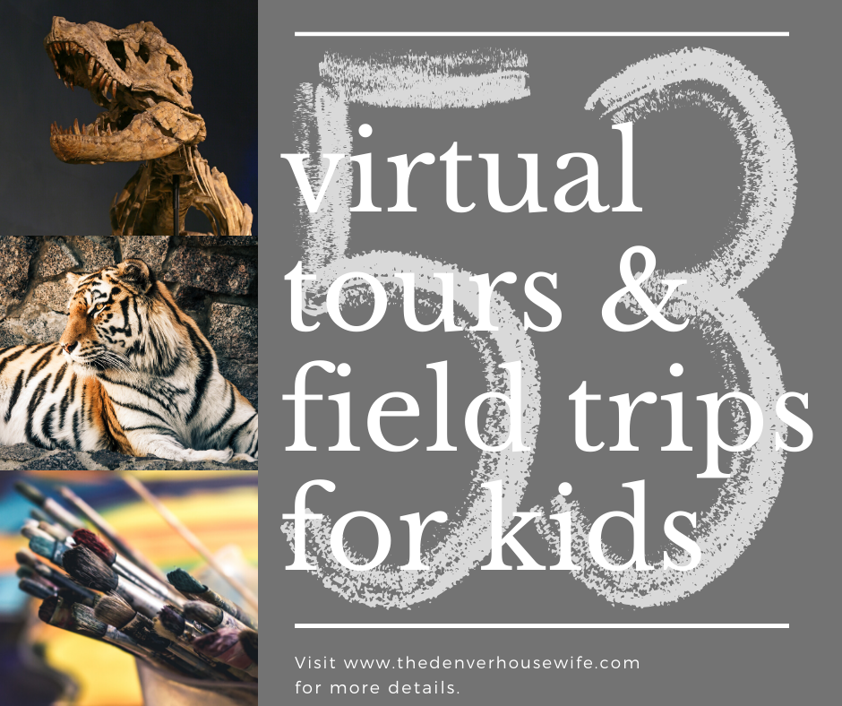 53 Virtual Tours and Field Trips for Kids